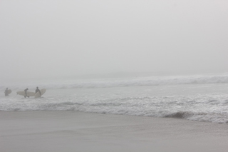 from californiacomeback.blogspot.com