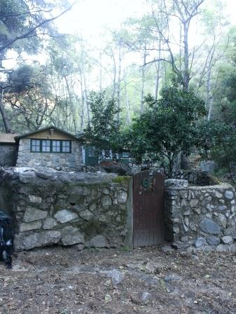 There are 81 cabins in Chantry Flat in Big Santa Anita Canyon (we passed about a dozen on the trail). Needless to say there's no electricity or internet; residents get propane and supplies carried in by pack animals and can make calls on a crank phone.