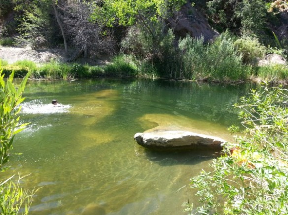 Bear Creek swimming hole